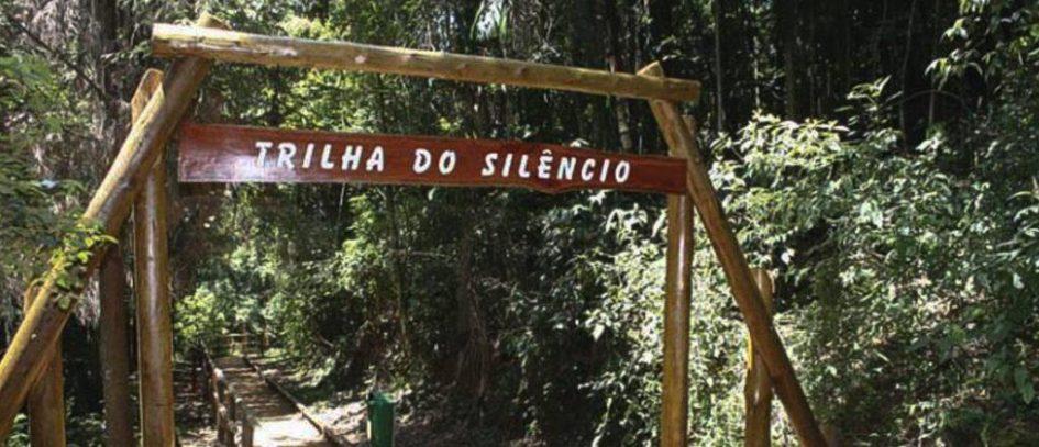 TRILHA DO SILÊNCIO NO PARQUE ESTADUAL DO JARAGUÁ