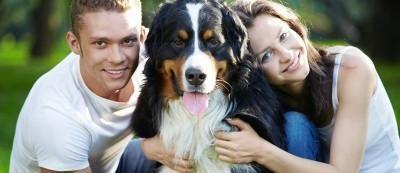 Cuidados especiais para o seu cachorro