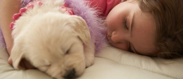 Faz mal dormir com animal de estimação na cama ?