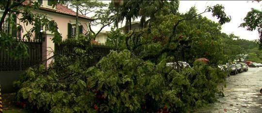 Volume de chuva de janeiro em SP já é 68% maior que média do mês